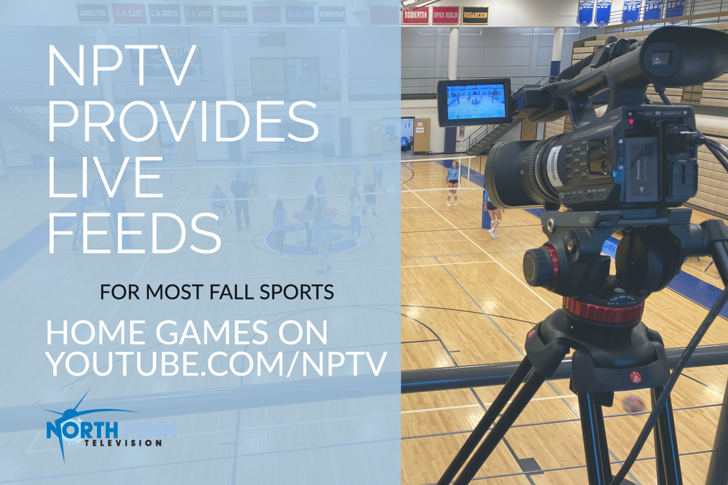 NPTV covers games